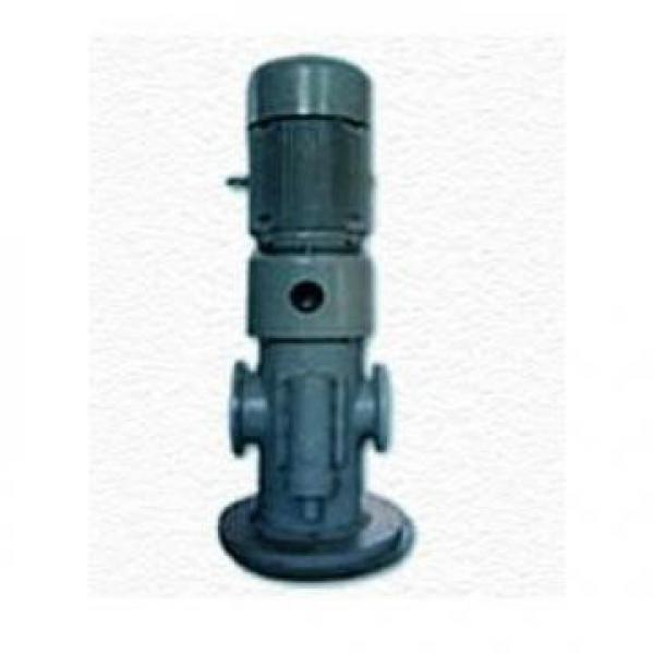 25CYZ-A-20 Υδραυλική αντλία σε απόθεμα #1 image